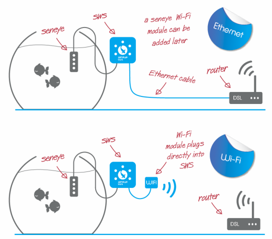 SWS wi-fi and ethernet wiring diagram